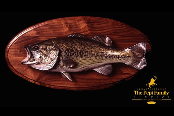 Jonas Brothers Taxidermy Bass