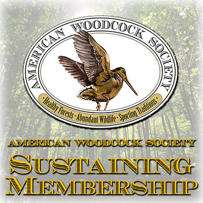 American Woodcock Society