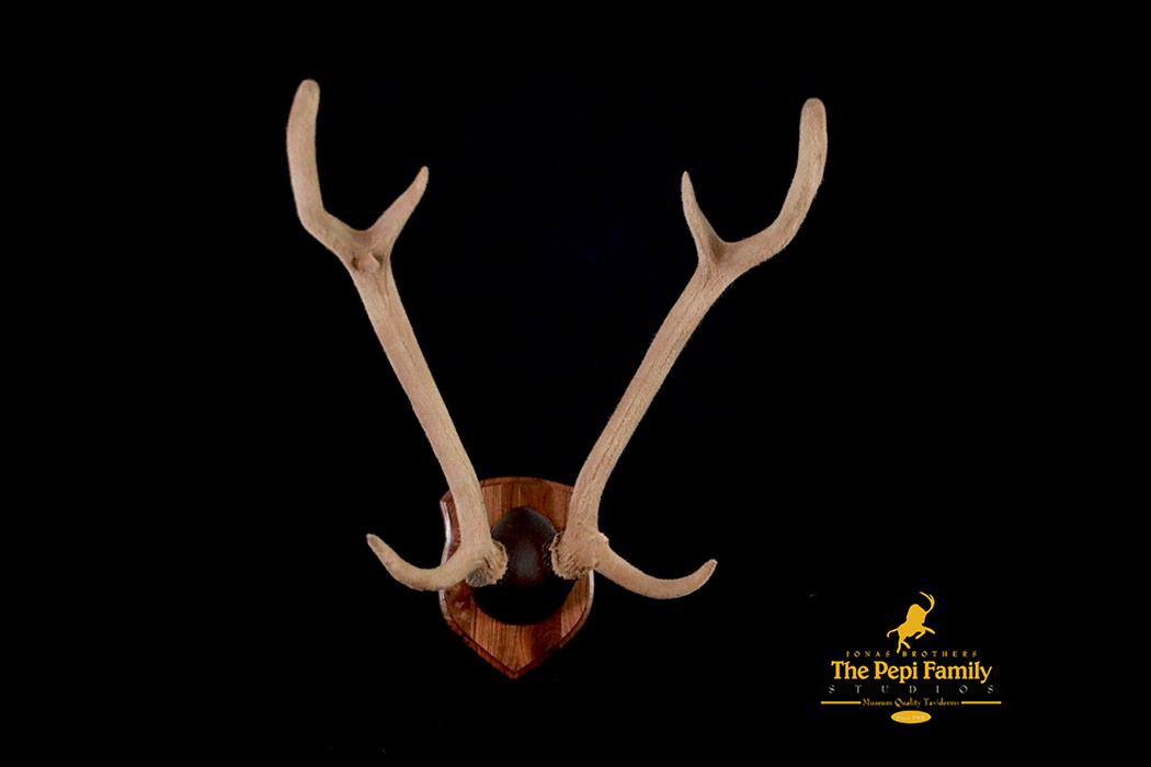 jbs-fake-velvet-axis-deer